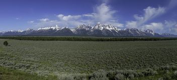 Panorama grand de chaîne de montagne de Teton image libre de droits