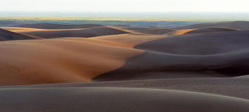Panorama grand de dunes de sable Photo libre de droits