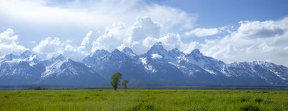 Panorama of Grand Teton mountain range in Wyoming Royalty Free Stock Photo