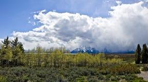 Panorama grande de Tetons Imagens de Stock Royalty Free
