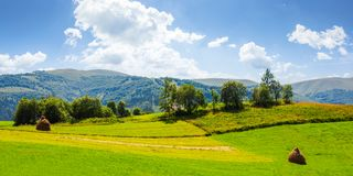 Lovely rural summer landscape in mountains. Panorama of grassy agricultural field with haystacks and orchard. lovely rural summer landscape in mountains Royalty Free Stock Images