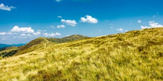 Panorama of grassy mountain ridge. Beautiful summer scenery in fine weather with some clouds on a blue sky Stock Images