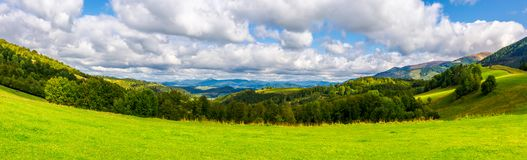 Panorama of green alpine meadow in autumn. Forested hills and distant mountain ridge in good weather Stock Photography
