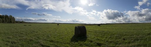 Green field with hay bales. A panorama of a green field with bales of hay in the summertime Royalty Free Stock Photography