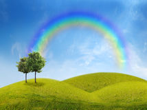 Panorama of green field with a tree. On blue sky background Royalty Free Stock Photography