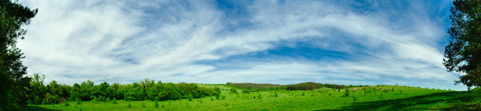 Panorama of green fields Royalty Free Stock Photography