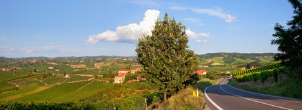 Panorama of green hills of Piedmont, Italy. Stock Photos