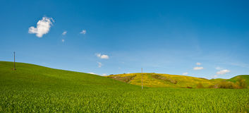 Sloping Meadows. Panorama of Green Sloping Meadows of Tuscany Stock Photo