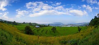 Panorama Green Terraced Rice Field at Ban Pa Bong Peay in Chiang Stock Photo