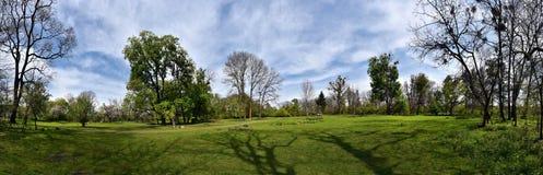 Panorama of a green vibrant park. Abandoned arboretum in Transylvania Stock Photo