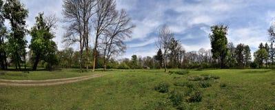 Panorama of a green vibrant park. Abandoned arboretum in Transylvania Stock Photos