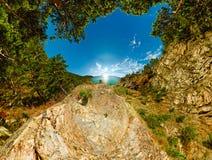 Panorama Grotto of trees overlooking the sea Baikal polar projec Royalty Free Stock Photos