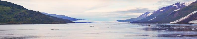Panorama- högskolafjord arkivbild