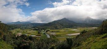 Panorama of Hanalei Valley on Kauai Stock Photos