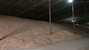 Panorama of the hangar for storing wheat grain. Covered dark storage area Wheat. Low key.  stock footage