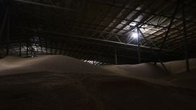 Panorama of the hangar for storing wheat grain. Covered dark storage area Wheat. Low key.  stock video footage