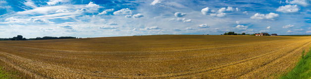 Panorama of harvested wheat fields and dramatic blue sky in July Royalty Free Stock Photo