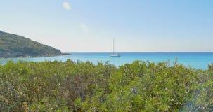 Panorama- havssikt på den soliga dagen för sommar Yacht på horisont Havet landskap blått klart vatten stock video