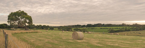 Panorama with haystack Stock Images