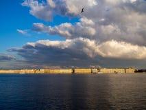 Panorama heilige-Petersburg en Neva-rivier Stock Afbeeldingen