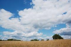 Panorama hermoso con el cielo azul Imagenes de archivo