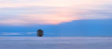 Panorama hermoso de la puesta del sol del invierno Imagen de archivo libre de regalías