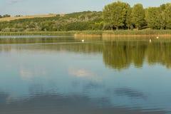 Panorama hermoso del lago con los pelícanos imágenes de archivo libres de regalías