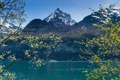 Panorama hermoso del lago de la montaña de la turquesa con los picos nevados y prados y bosques y barcos verdes en el lago Foto de archivo