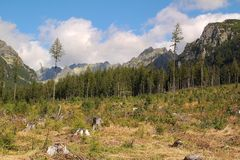 Panorama of the High Tatras Mountains, Slovakia. Panorama of the High Tatras Mountains, view of forest, Slovakia stock photos