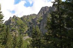 Panorama of the High Tatras Mountains, Slovakia. Panorama of the High Tatras Mountains, view of forest, Slovakia Royalty Free Stock Photo
