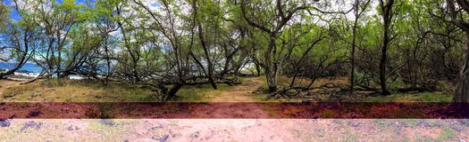 Panorama of hiking path through Ruins of ancient village Maonakala Village Complex, Kualapa Cluster Stock Photos