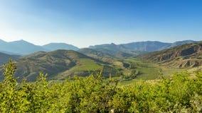 Panorama of the hills of the Crimea Peninsula vineyards Stock Photo