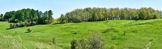 Panorama hills. The European part of Russia. Smooth slope. Forest belt. A Sunny spring day. Panorama hills. The European part of Russia. Smooth slope. Forest Stock Image