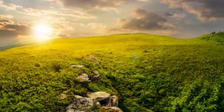 Panorama of the hillside meadow at sunset. Lovely summer landscape with boulders among the grass. location Runa mountain, Ukraine Stock Images