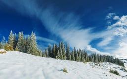 Panorama hivernal dramatique Photos libres de droits