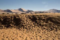 Panorama i Namibia Royaltyfria Foton