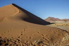 Panorama i Namibia Arkivfoton