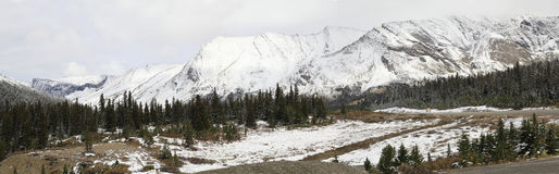 Panorama of the Icefield Parkway after the First Snow Fall Royalty Free Stock Photography