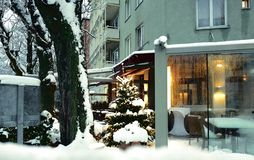 Panorama ideal del invierno fotografía de archivo libre de regalías