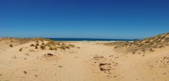 Panorama image of sand dunes and sea on the island of sardinia italy stock photo