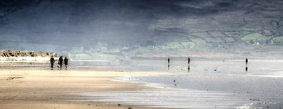 Panorama of Inch strand. Strand of Inch (co Kerry, Ireland) with people walking in the far royalty free stock image