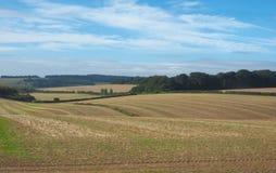 Panorama inglês do país em Salisbúria imagem de stock royalty free