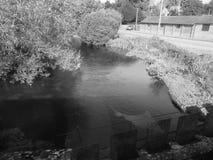 Panorama inglês do país em Salisbúria em preto e branco imagem de stock royalty free