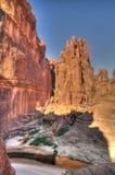 Panorama innerhalb der Schlucht alias Guelta d ?Archei in Ost-Ennedi, Tschad lizenzfreies stockfoto