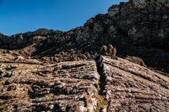 Panorama inside caldera of Pico volcano, Azores, Portugal Stock Photos