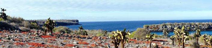 Panorama of the Islas Plaza in the Galapagos Royalty Free Stock Image