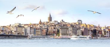 Panorama of Istanbul with Galata Tower at skyline and seagulls over the sea, wide landscape of Golden Horn, travel background for. Billboard royalty free stock image