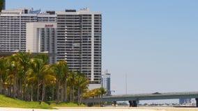 Panorama 4k los E.E.U.U. de la bahía de Miami del verano que camina del parque céntrico ligero de la palma almacen de video