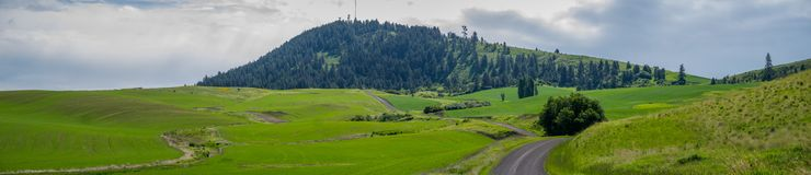 Panorama: Kamiak Butte Zdjęcie Stock
