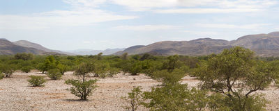 Panorama of the Kaokoland desert Royalty Free Stock Image